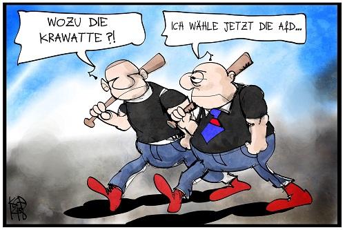 AfD_Alternative_fuer_Deutschland_FDP_NPD
