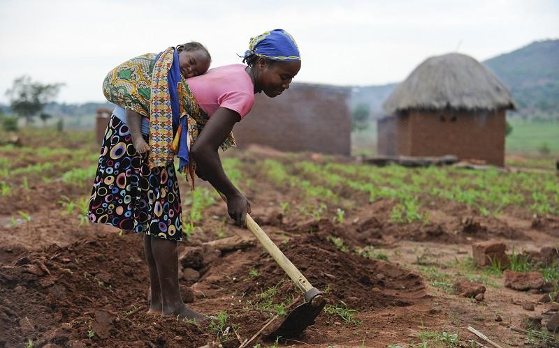 minister für landwirtschaft