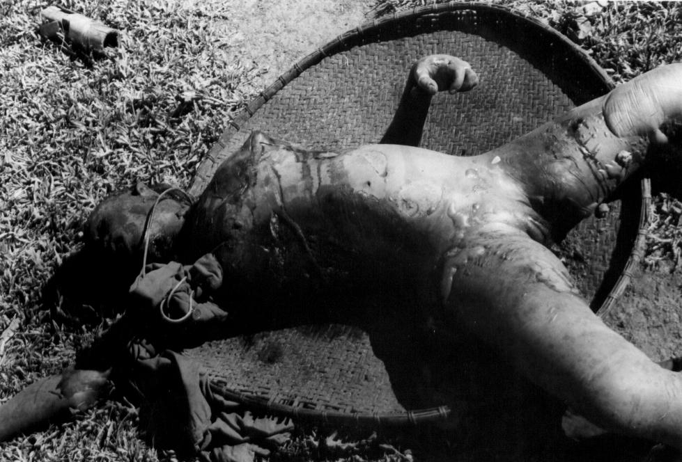Vietcong Foltermethoden