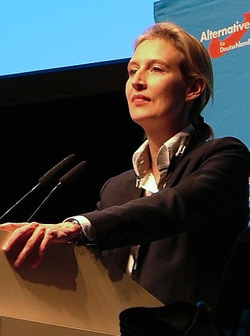 Alice Elisabeth Weidel AfD Alternative fuer Deutschland Spendenaffaere Spendenskandal, Spendenwaesche Verschleierung Parteispenden Kritisches Netzwerk Querfinanzierung Schattenfinanzen