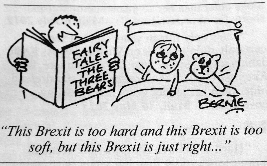 brexit_fairy_tales_gina_miller_theresa_may_baron_thomas_of_cwmgiedd_referendum_jeremy_corbyn_david_cameron_nigel_farage_carwyn_jones_kritisches_netzwerk.jpg