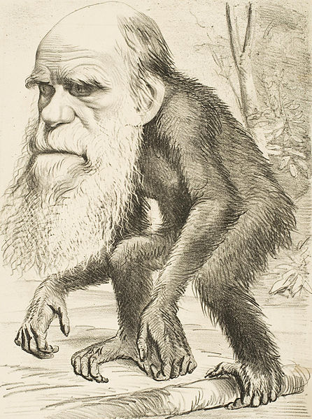 charles_darwin_menschenaffe_evolution_evolutionstheorie_darwinismus_natuerliche_auslese_selektionsprinzip_kritisches_netzwerk_on_the_origin_of_species_the_hornet_orang-utan_outang.jpg