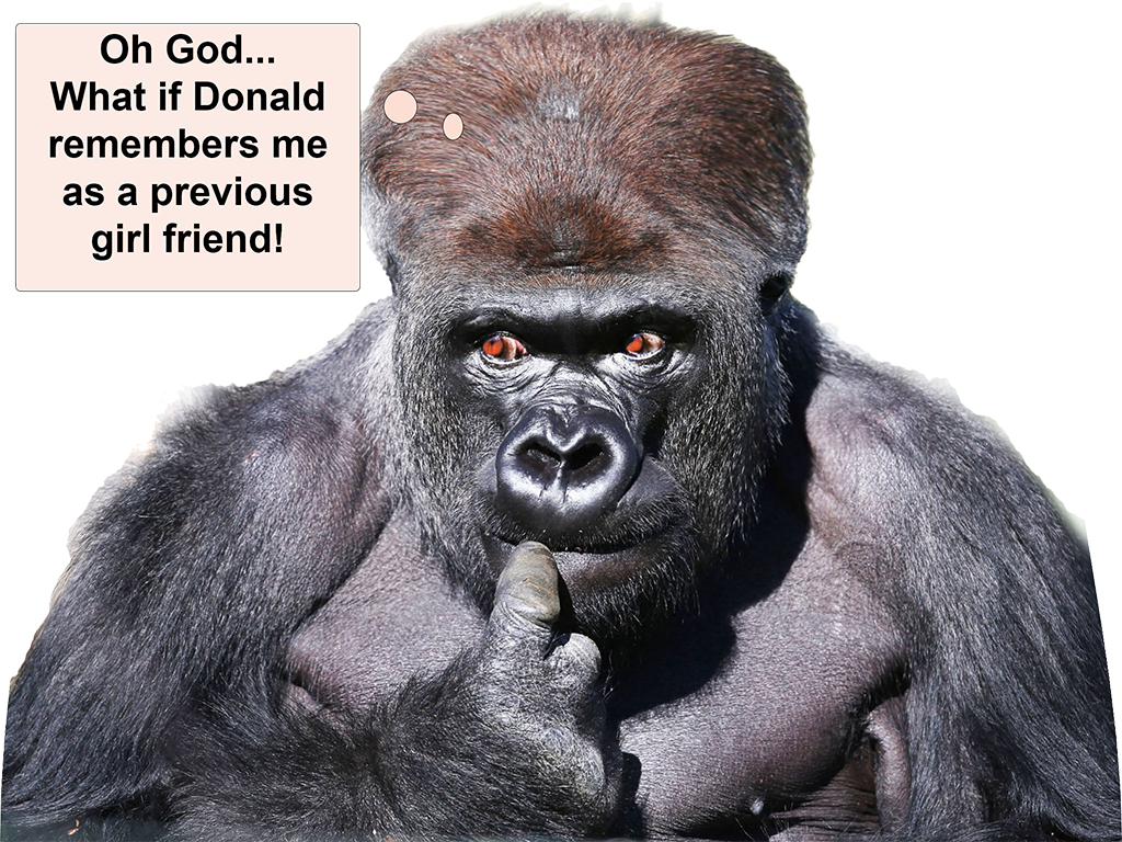 donald_trump_gorilla_menschenaffe_primate_fuck_assertion_sexism_rape_culture_presidential_election_republikaner_republican_party_republicans_45th_president_usa_kritisches_netzwerk.png