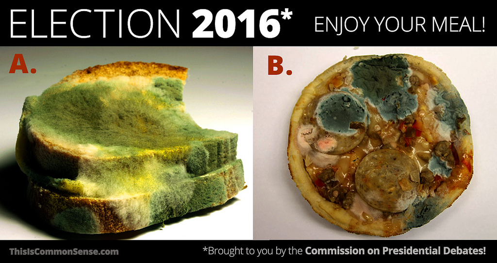 election_2016_molded_bread_mouldy_stale_scruffy_pizza_pest_cholera_donald_trump_hillary_clinton_kritisches_netzwerk_make_america_great_again_demokratie_democracy.jpg