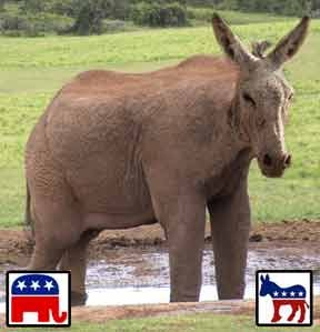 elefantenesel_elephant_donkey_demopublican_demopublicans_republicrat_republicrats_usa_kritisches_netzwerk_republican_democratic_party_republicans_republikaner_democrats.jpg