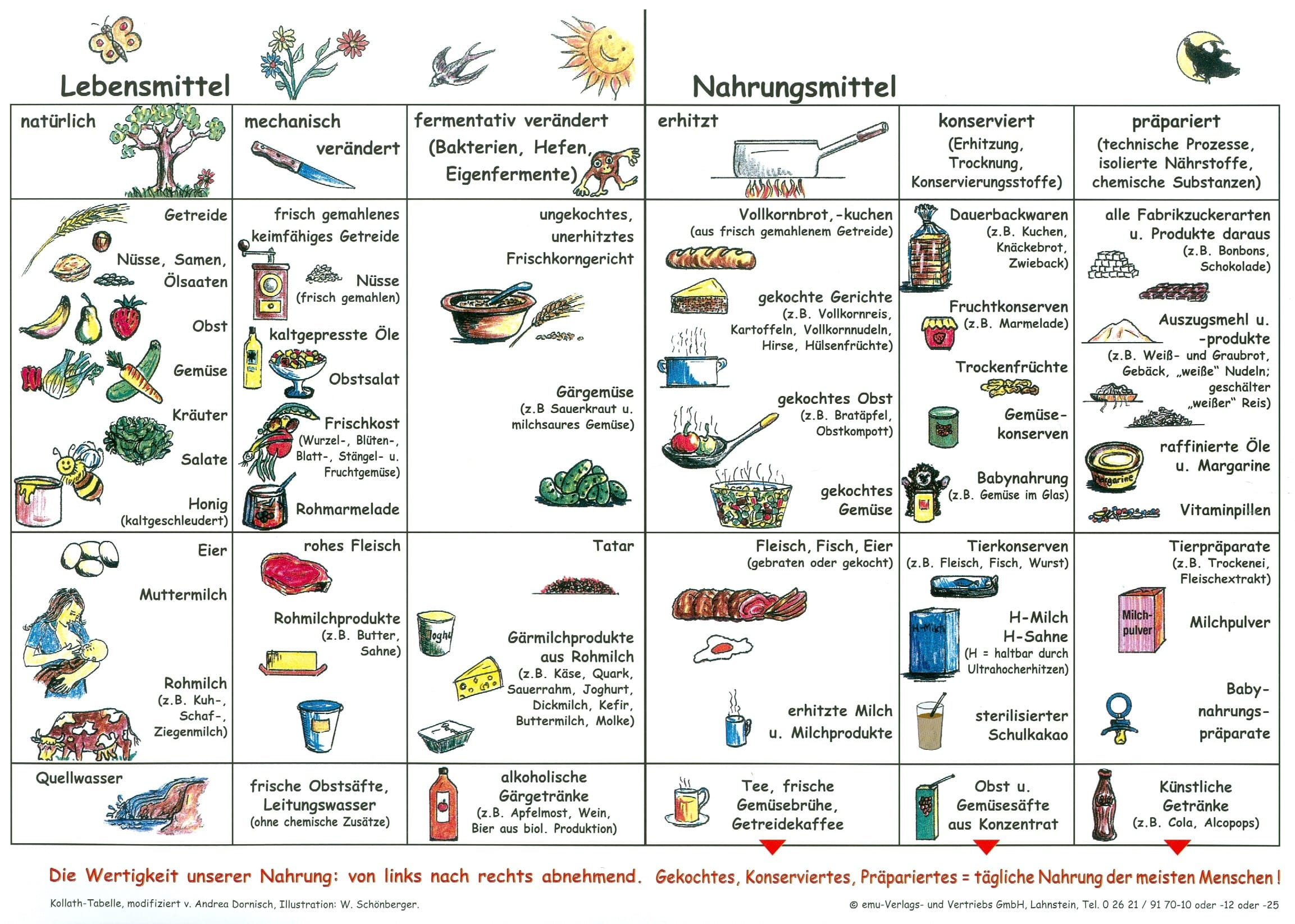 Nahrungsmittel = Lebensmittel ? | KRITISCHES NETZWERK